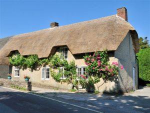 vine cottage studland